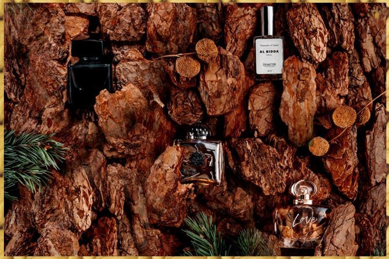 Модные женские ароматы с красивым шлейфом: топ-24 уютных парфюма