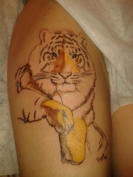 Тату тигр: значение рисунка и 14 популярных вариантов